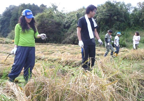 2011102012.jpg